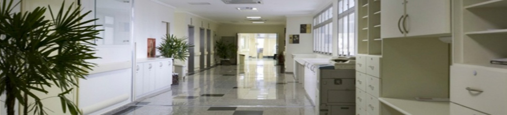 http://www.hospitalsaopaulo.org.br/sites/geih/